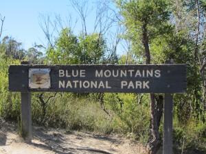Le parc national des montagnes bleues.